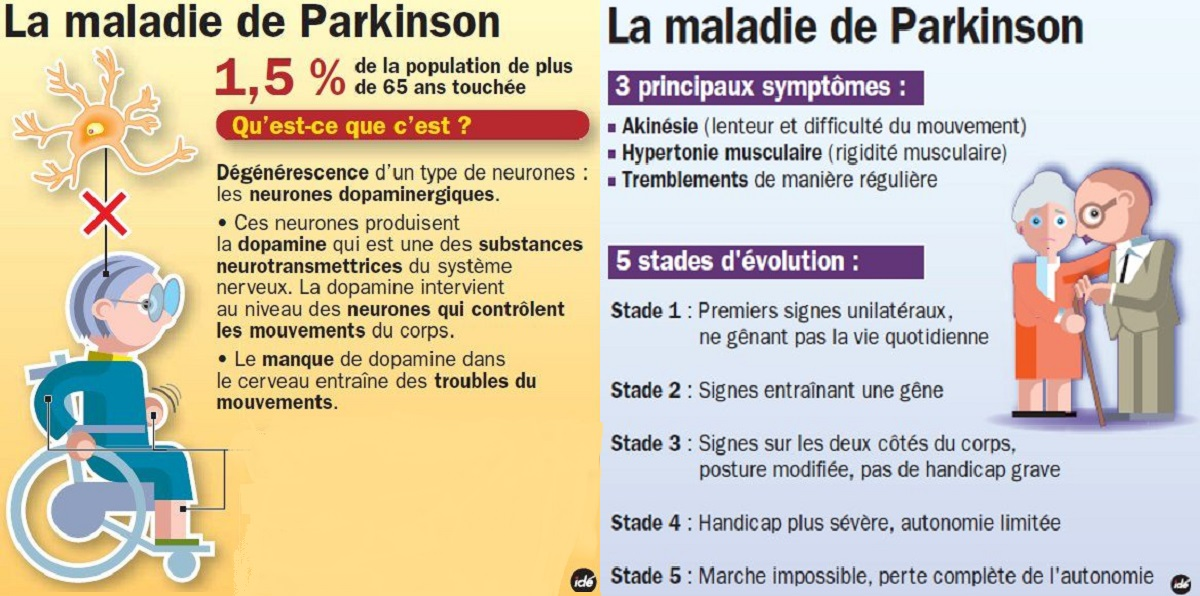 Journee mondial Parkinson graphique la maladie de Parkison