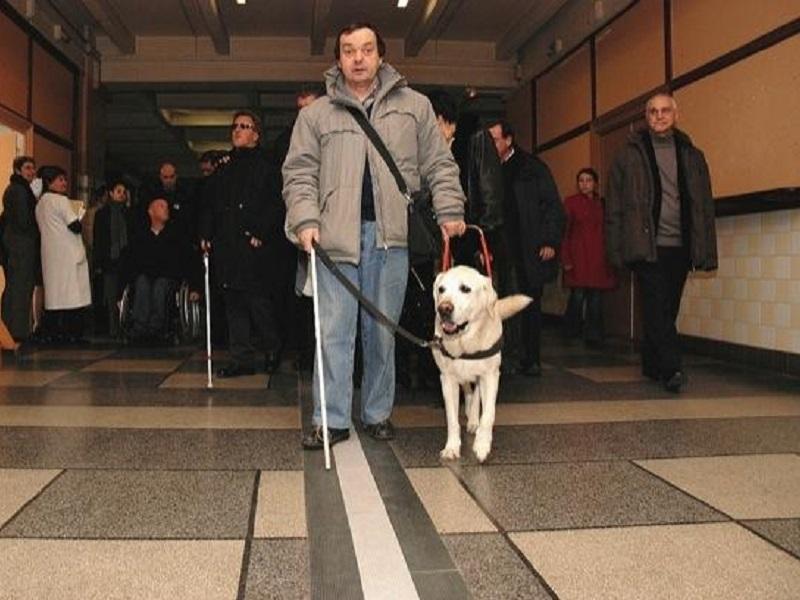 un etudiant handicapé non voyant lyon 461e1